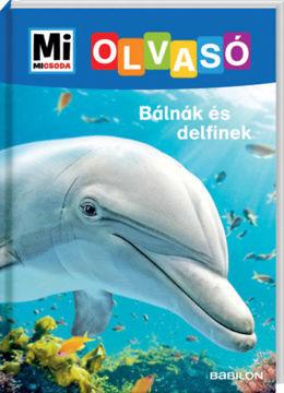 Bálnák és delfinek termékhez kapcsolódó kép