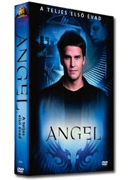 Angel - 1. évad (6 DVD) termékhez kapcsolódó kép