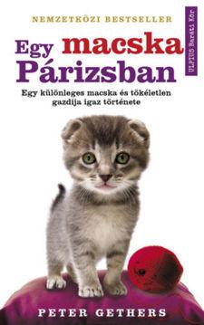 Egy macska Párizsban termékhez kapcsolódó kép