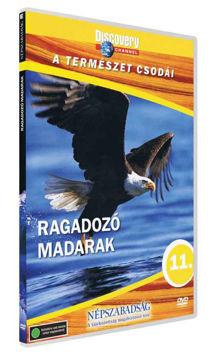 A természet csodái 11. - Ragadozó madarak termékhez kapcsolódó kép