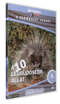 A természet csodái 8. - A 10 legbüdösebb állat termékhez kapcsolódó kép